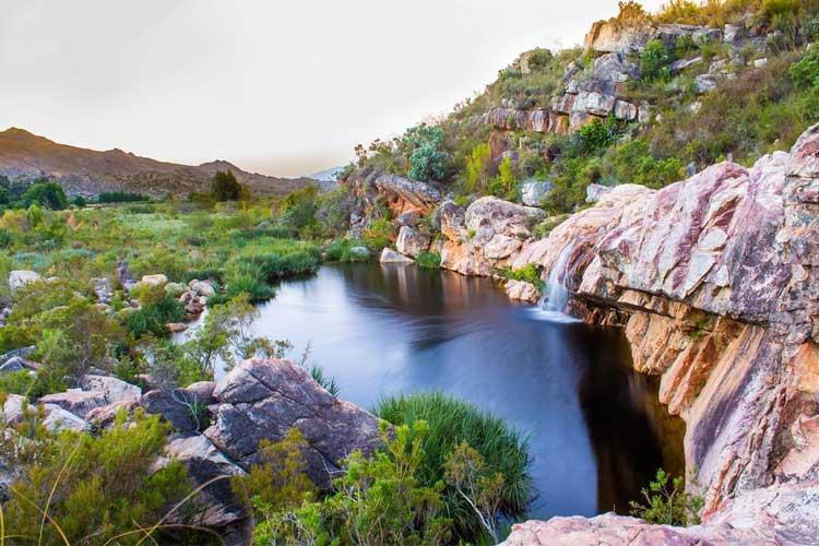 Beaverlac: Best Dams
