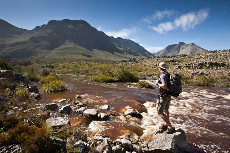 Palmiet River: Best Dams and Rivers in Cape Town