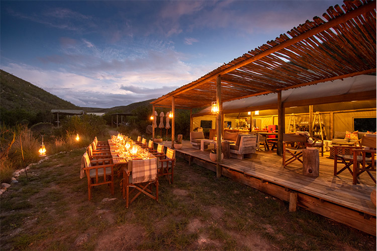 Best Glamping in The Western Cape: Tented Eco Camp Accommodation at Gondwana Game Reserve