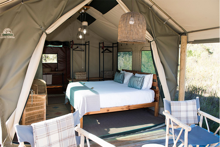Best Glamping in The Western Cape: Tented Eco Camp at Gondwana Game Reserve Tent Interior