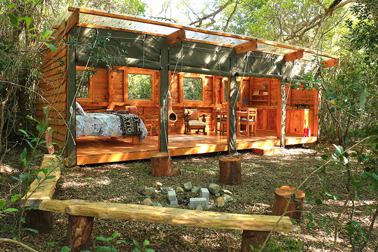 Best Glamping in The Western Cape: Platbos Forest Bush Buck Suite