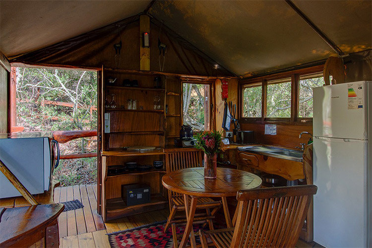 Best Glamping in The Western Cape: Teniqua Treetops Tent Interior