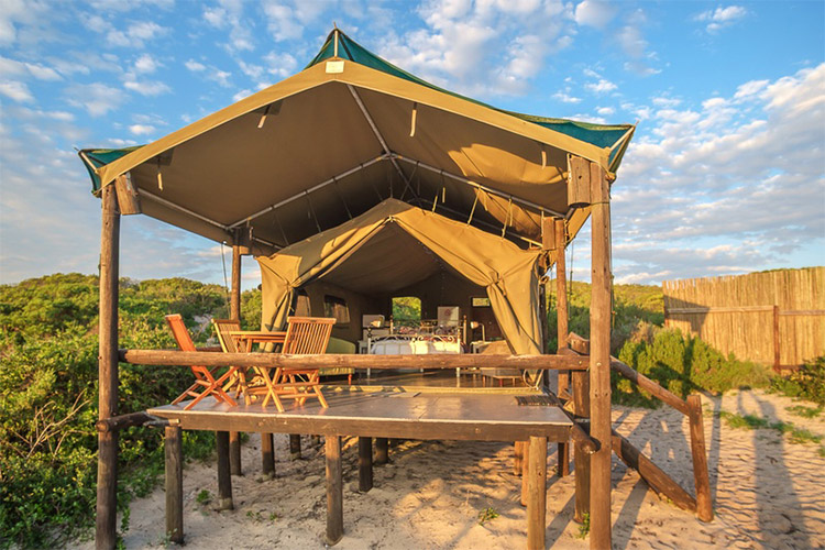 Best Glamping in The Western Cape: West Coast Luxury Tents