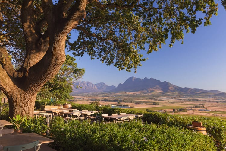 Jewells: The Best Things To Do at Spice Route in Paarl