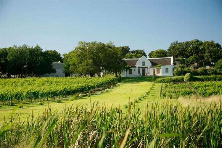 Vondeling Wines Winelands Accommodation
