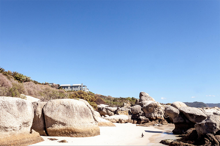 Tintswalo At Boulders Beach Villas