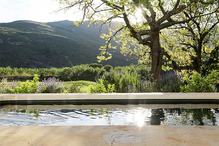 Weekend Getaways Cape Town: Die Laaitjie Farmhouse Pool