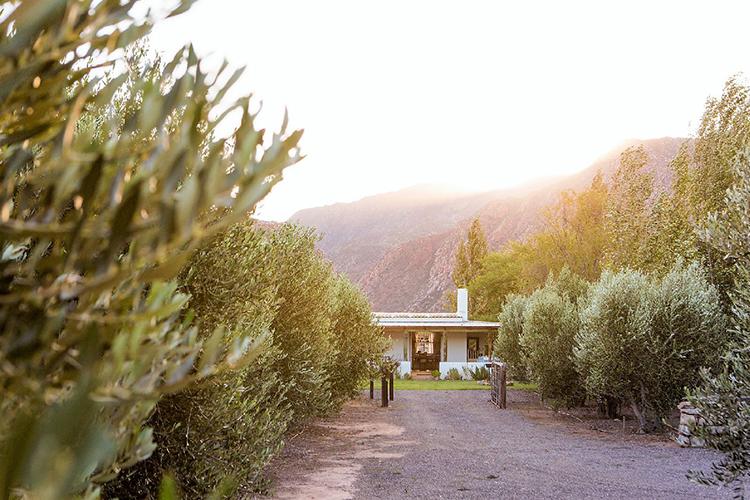 Weekend Getaways Cape Town: Klein Nektar Farm Cottage