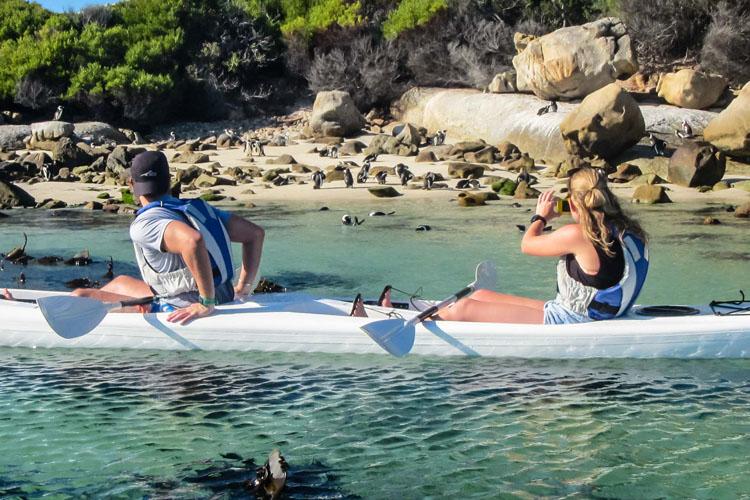 Penguin Kayak