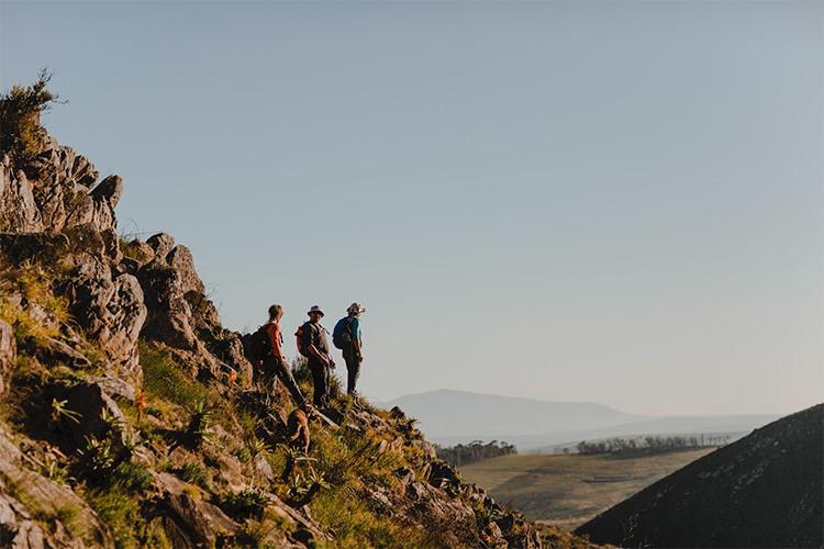 Pet-Friendly Getaways Western Cape: Bokrivier Cottages Hiking Trails