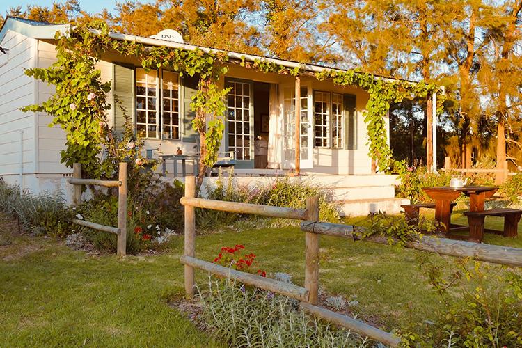 Pet-Friendly Getaways Western Cape: Cheverells Farm Cottage