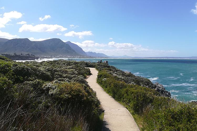 Pet-Friendly Getaways Western Cape: Protea House Boardwalk