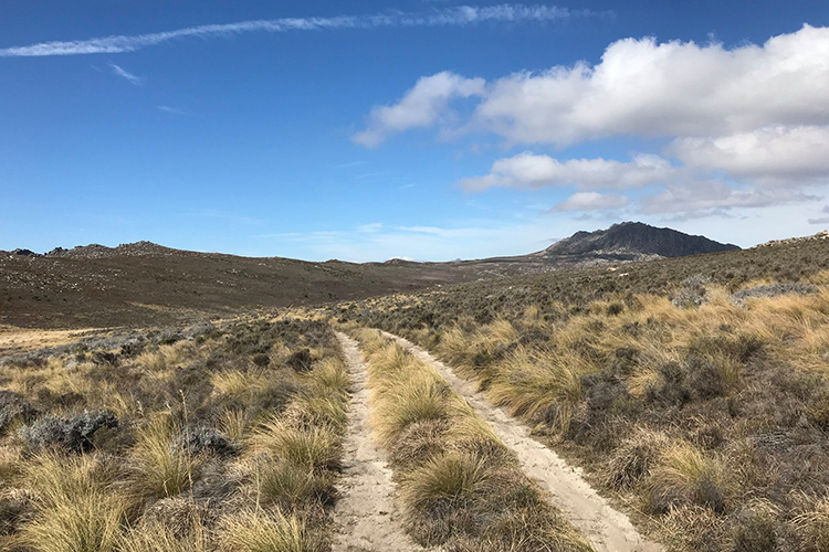 Pet-Friendly Getaways Western Cape: Simonskloof Mountain Retreat Setting