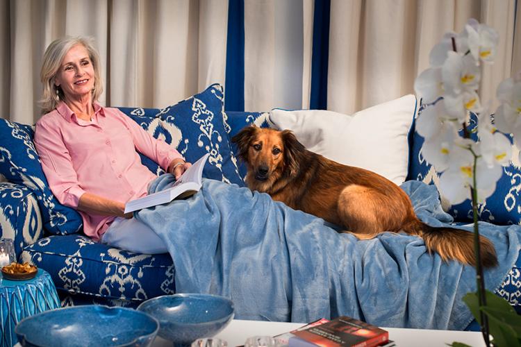 Pet-Friendly Getaways Western Cape: The Plettenberg Hotel Lounge