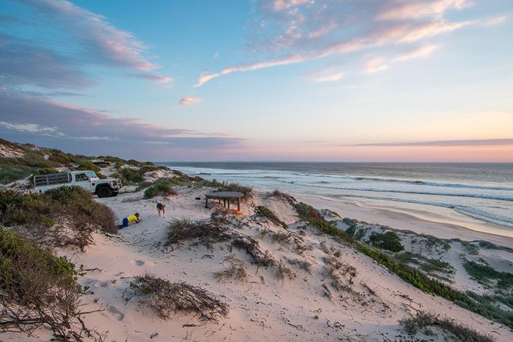 Pet-Friendly Getaways Western Cape: West Coast Luxury Tents