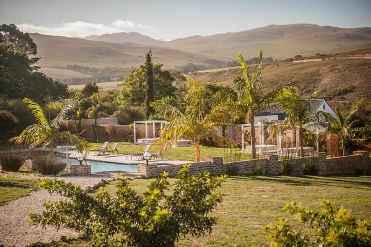 Pet-Friendly Getaways Western Cape: White Water Farm Pool